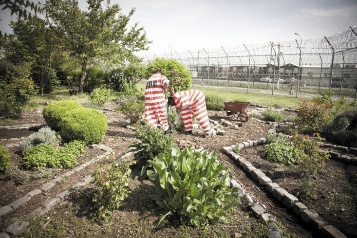 Orange is the New Green: A Prison Garden on Rikers Island